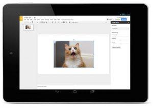 googleslides-cat