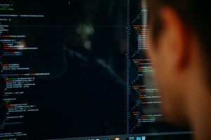 Netpremacy development services