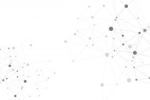 Netpremacy white background homepage