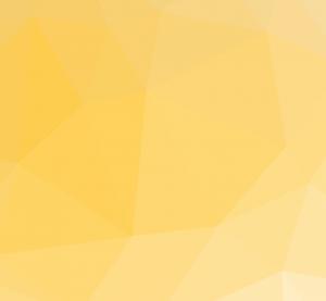 Netpremacy Homepage banner