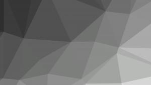 Netpremacy Homepage grey background
