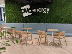 OVO Energy Google Chrome Netpremacy